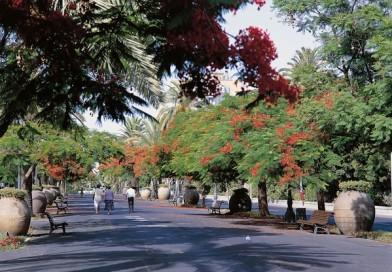 Sooduspakkumised Tenerifele