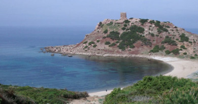 Sardiinia ringreis