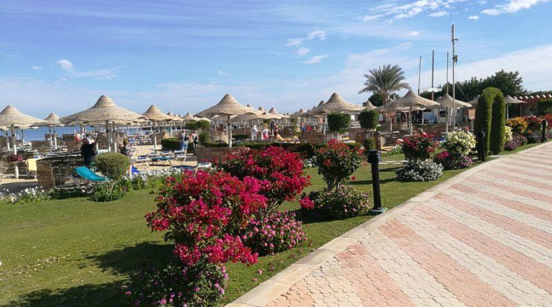 Hurghada väljumine 05.11.2021 (7ööd).